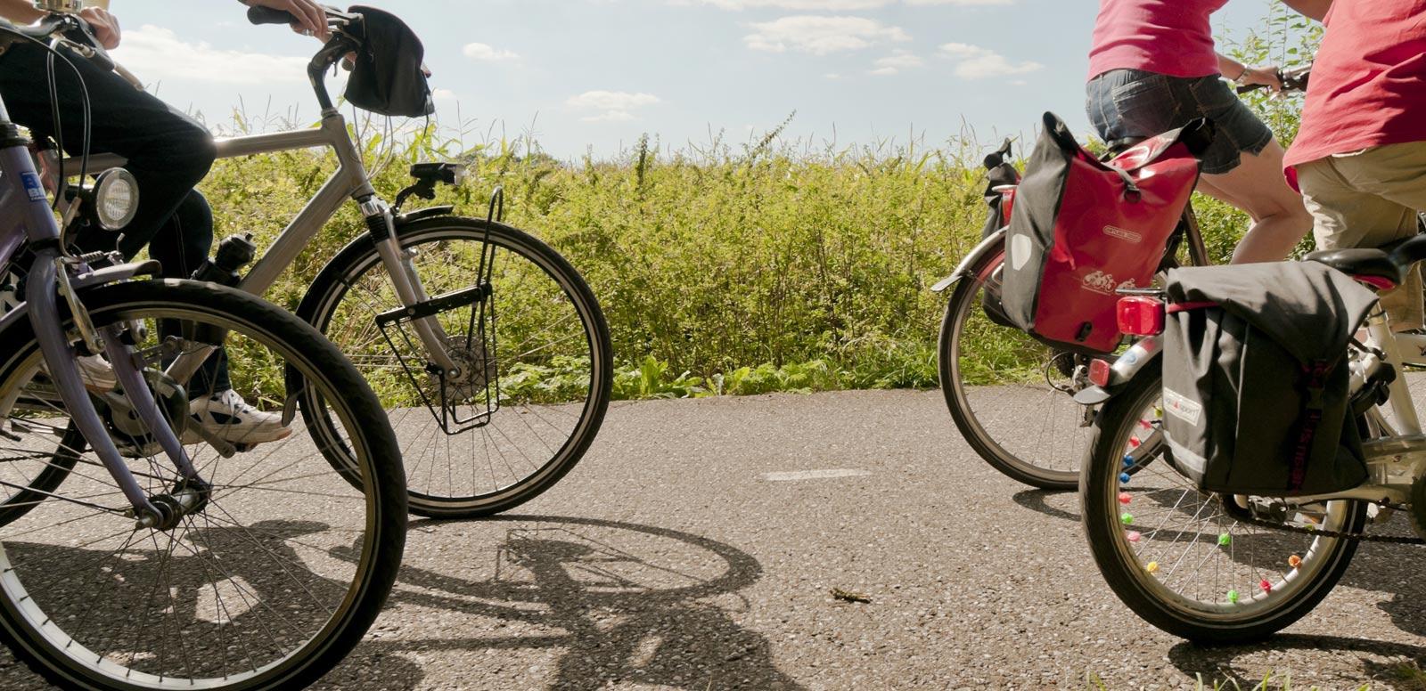 fietsen weert nederweert